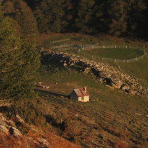 Cabane d'Arraing